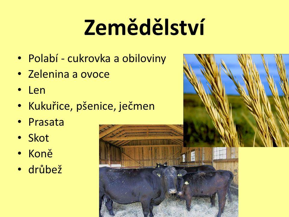 Zemědělství • Polabí - cukrovka a obiloviny • Zelenina a ovoce • Len • Kukuřice, pšenice, ječmen • Prasata • Skot • Koně • drůbež