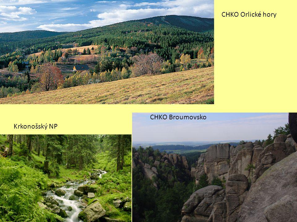 CHKO Broumovsko Krkonošský NP CHKO Orlické hory