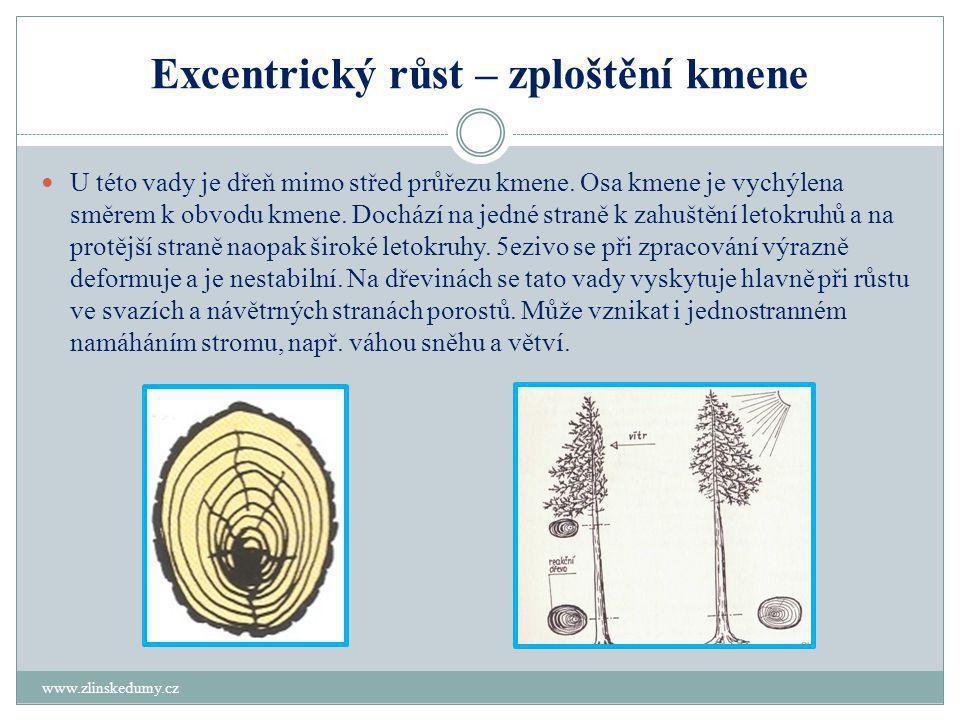 Excentrický růst – zploštění kmene www.zlinskedumy.cz  U této vady je dřeň mimo střed průřezu kmene.
