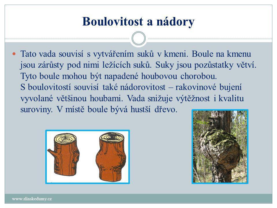 Boulovitost a nádory www.zlinskedumy.cz  Tato vada souvisí s vytvářením suků v kmeni.