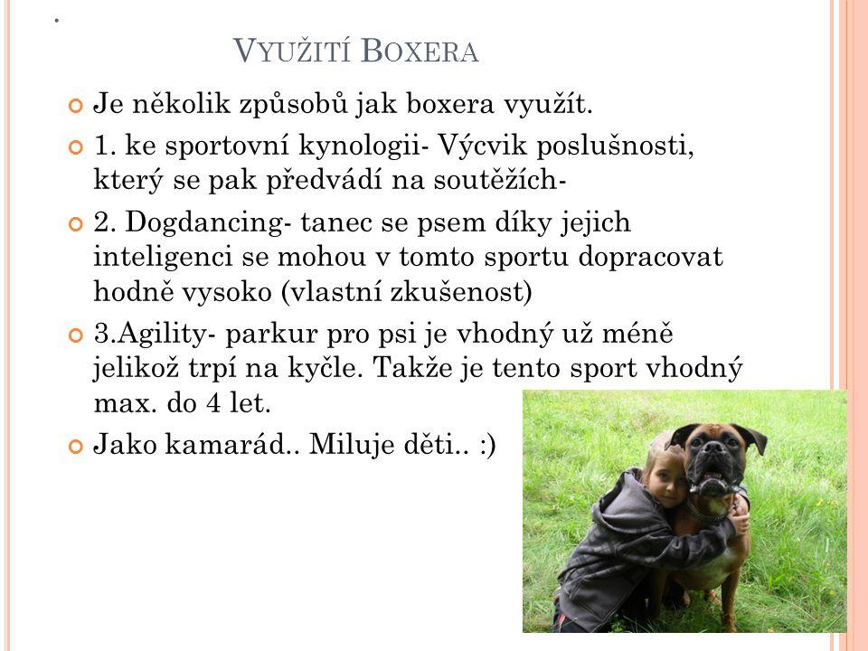 V YUŽITÍ B OXERA Je několik způsobů jak boxera využít.