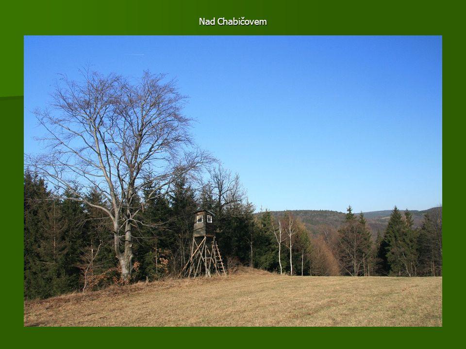 Pastviny u Chabičova