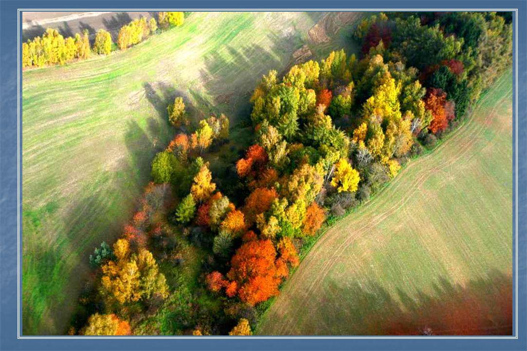 Podzimní barevná příroda