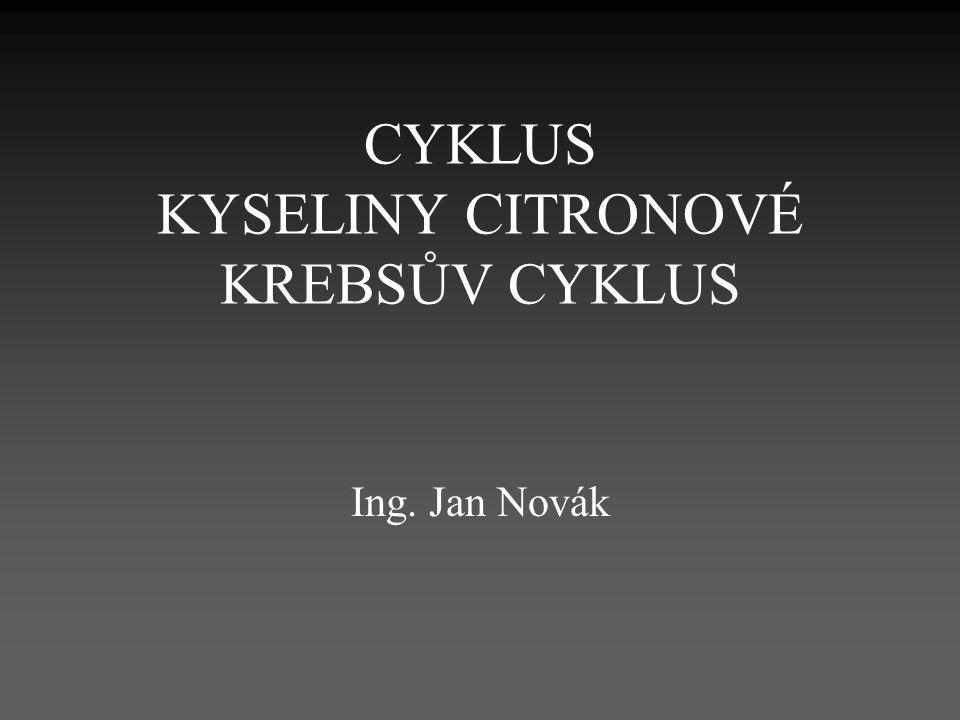 CYKLUS KYSELINY CITRONOVÉ KREBSŮV CYKLUS Ing. Jan Novák