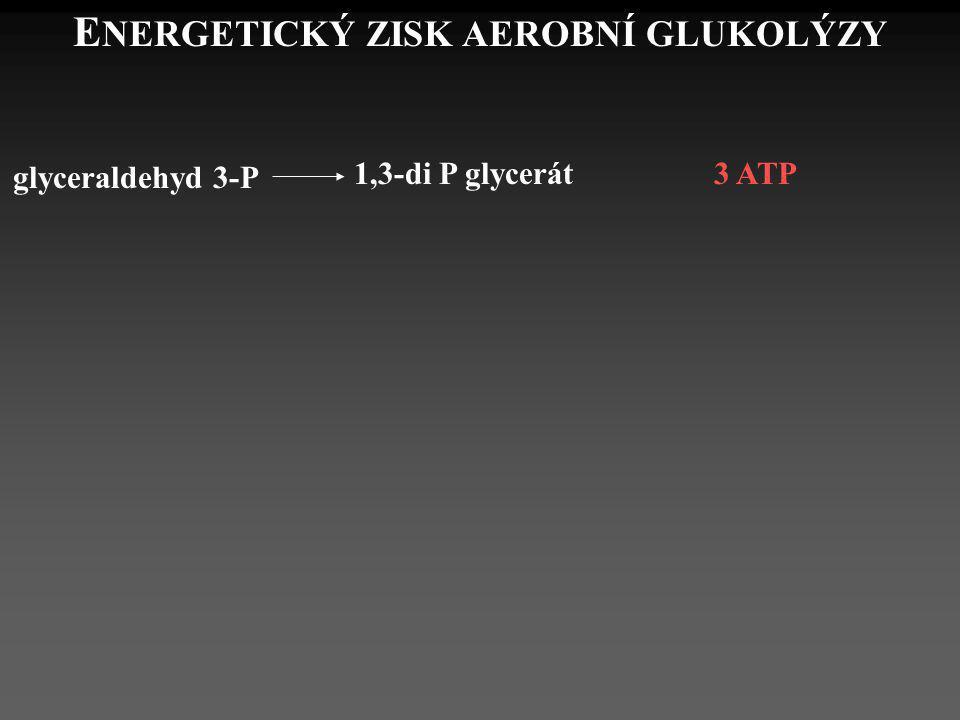 E NERGETICKÝ ZISK AEROBNÍ GLUKOLÝZY glyceraldehyd 3-P 1,3-di P glycerát3 ATP