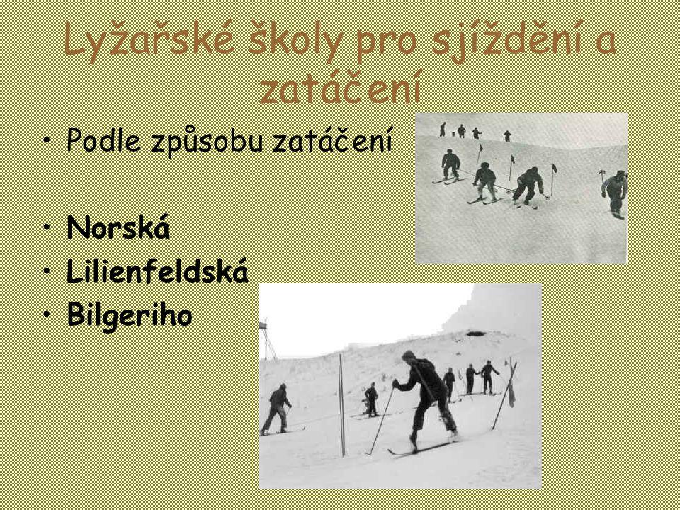 Lyžařské školy pro sjíždění a zatáčení •Podle způsobu zatáčení •Norská •Lilienfeldská •Bilgeriho