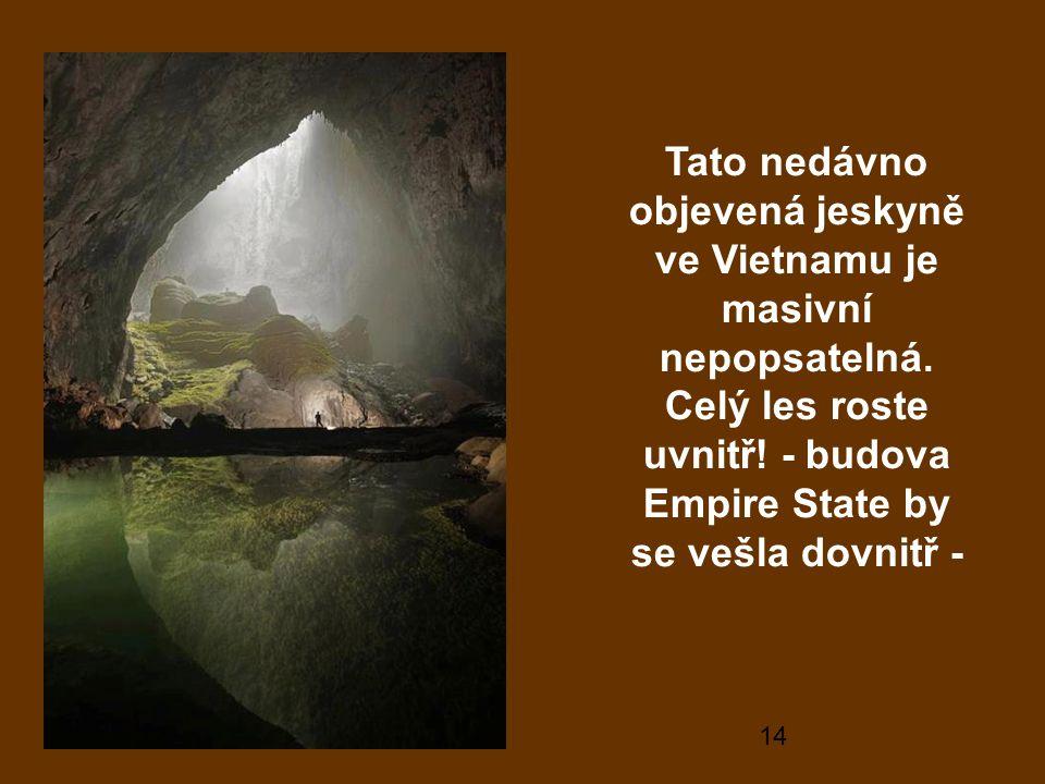 14 Tato nedávno objevená jeskyně ve Vietnamu je masivní nepopsatelná.