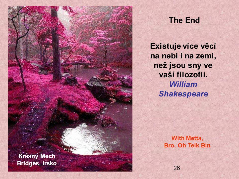 26 Krásný Mech Bridges, Irsko The End Existuje více věcí na nebi i na zemi, než jsou sny ve vaší filozofii. William Shakespeare With Metta, Bro. Oh Te