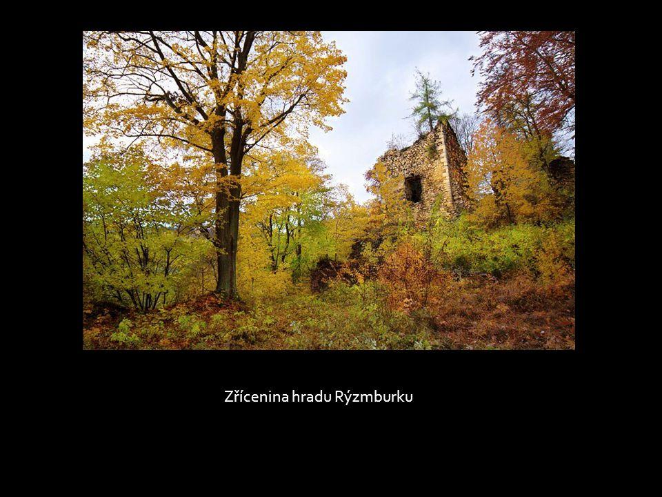 Lesy nad hradem Rýzmburkem, Osek