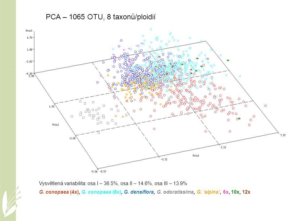 Vysvětlená variabilita: osa I – 36.5%, osa II – 14.6%, osa III – 13.9% G. conopsea (4x), G. conopsea (8x), G. densiflora, G. odoratissima, G. 'alpina'