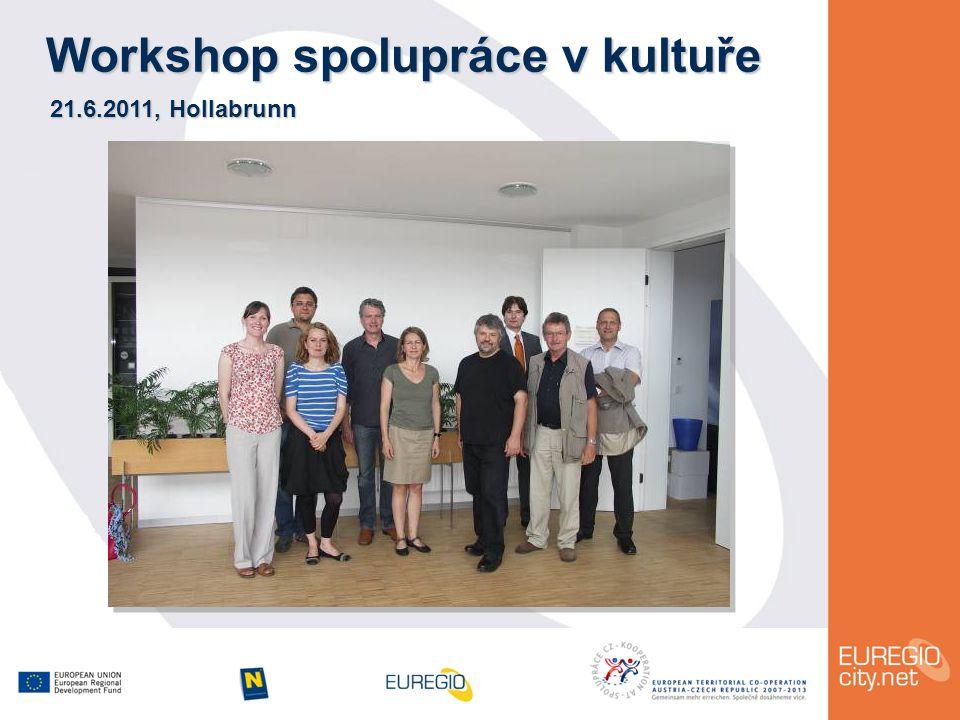 Workshop spolupráce v kultuře 21.6.2011, Hollabrunn
