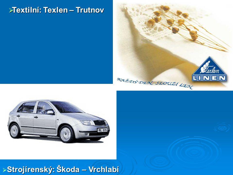  Papírenský: KRKONOŠSKÉ PAPÍRNY a.s. (Hostinné)  Elektrotechnický: Siemens, Tyco (Trutnov)  Kožedělný – KARA Trutnov