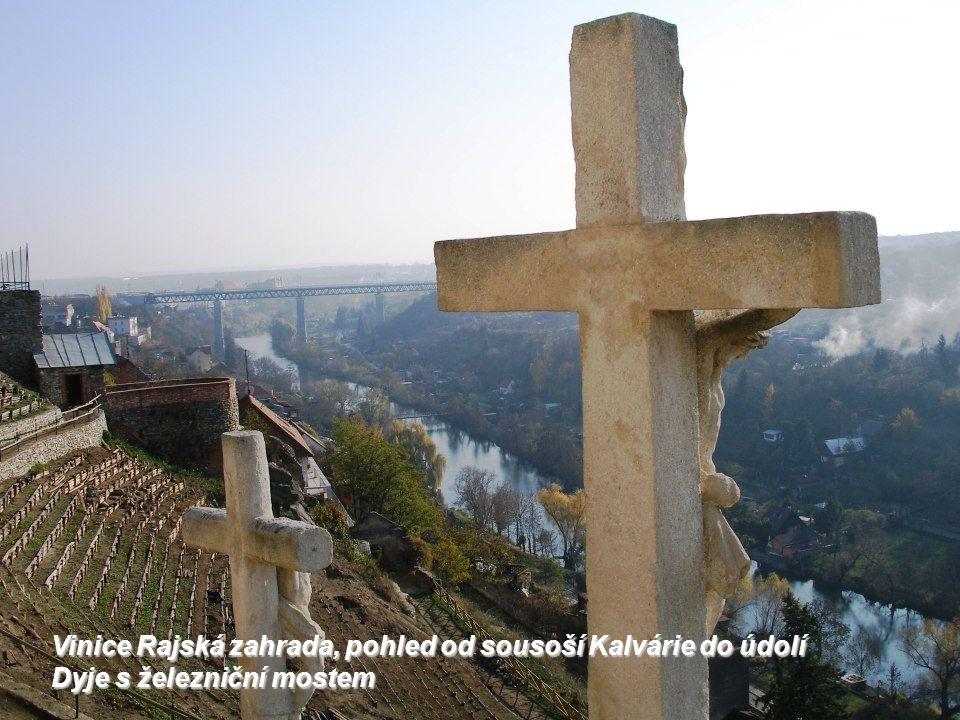 Minoritský klášter z 1.třetiny 13.stol, po bitvě na Moravském Poli zde byl pochován Přemysl Otakar II