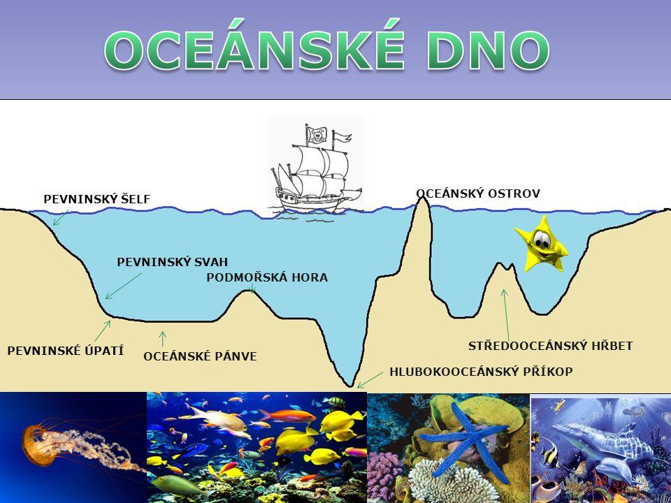 PEVNINSKÝ ŠELF PEVNINSKÝ SVAH PEVNINSKÉ ÚPATÍ OCEÁNSKÉ PÁNVE PODMOŘSKÁ HORA HLUBOKOOCEÁNSKÝ PŘÍKOP OCEÁNSKÝ OSTROV STŘEDOOCEÁNSKÝ HŘBET