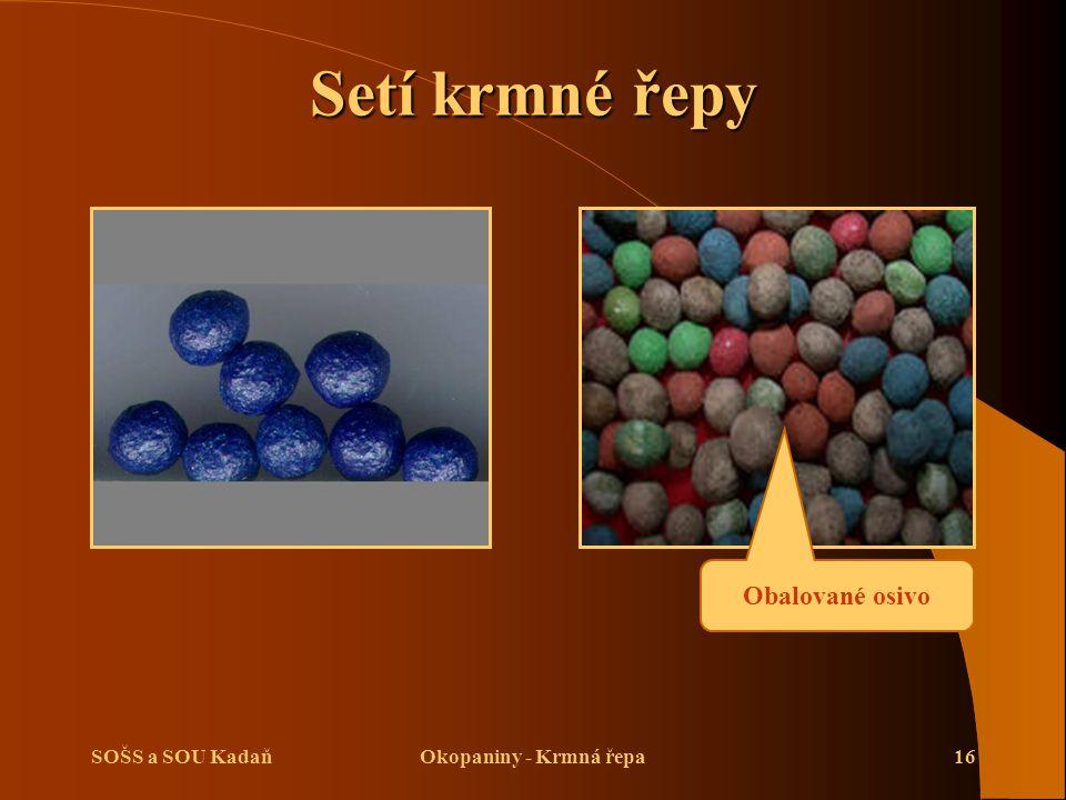 SOŠS a SOU KadaňOkopaniny - Krmná řepa16 Setí krmné řepy Obalované osivo