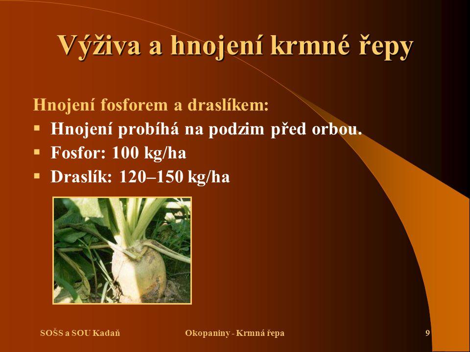 SOŠS a SOU KadaňOkopaniny - Krmná řepa9 Výživa a hnojení krmné řepy Hnojení fosforem a draslíkem:  Hnojení probíhá na podzim před orbou.