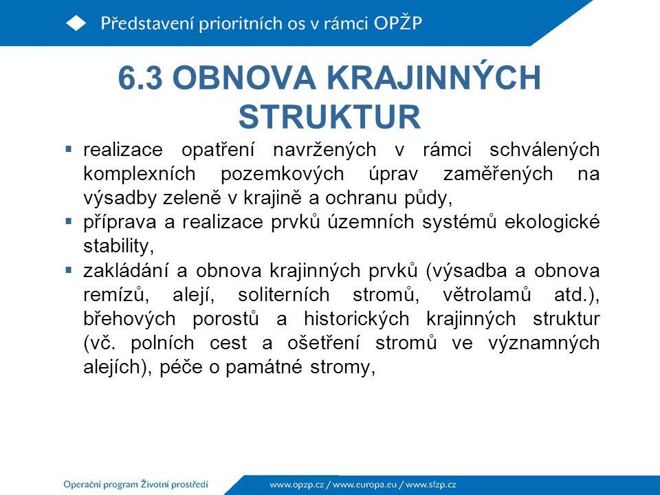 6.3 OBNOVA KRAJINNÝCH STRUKTUR  realizace opatření navržených v rámci schválených komplexních pozemkových úprav zaměřených na výsadby zeleně v krajině a ochranu půdy,  příprava a realizace prvků územních systémů ekologické stability,  zakládání a obnova krajinných prvků (výsadba a obnova remízů, alejí, soliterních stromů, větrolamů atd.), břehových porostů a historických krajinných struktur (vč.