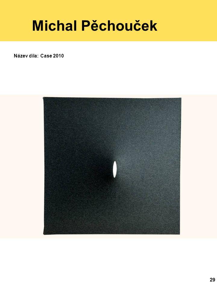 29 Michal Pěchouček Název díla: Case 2010