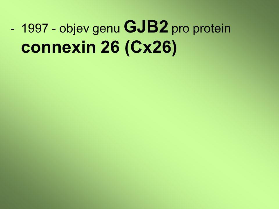 -1997 - objev genu GJB2 pro protein connexin 26 (Cx26)