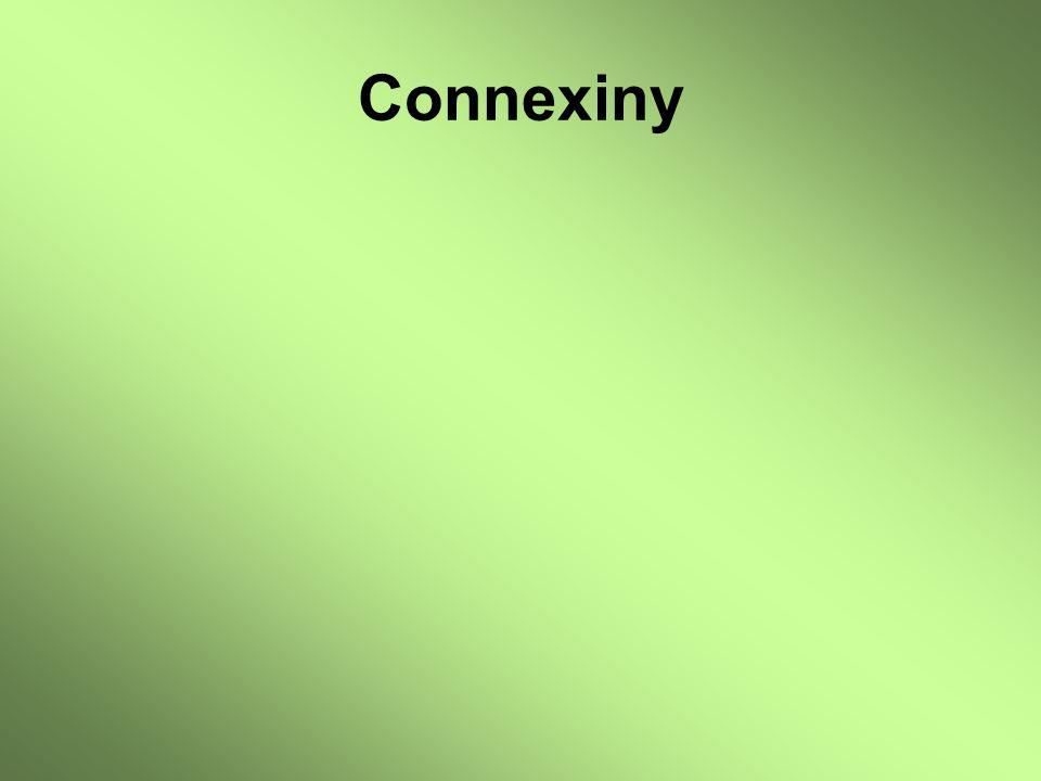 Connexiny