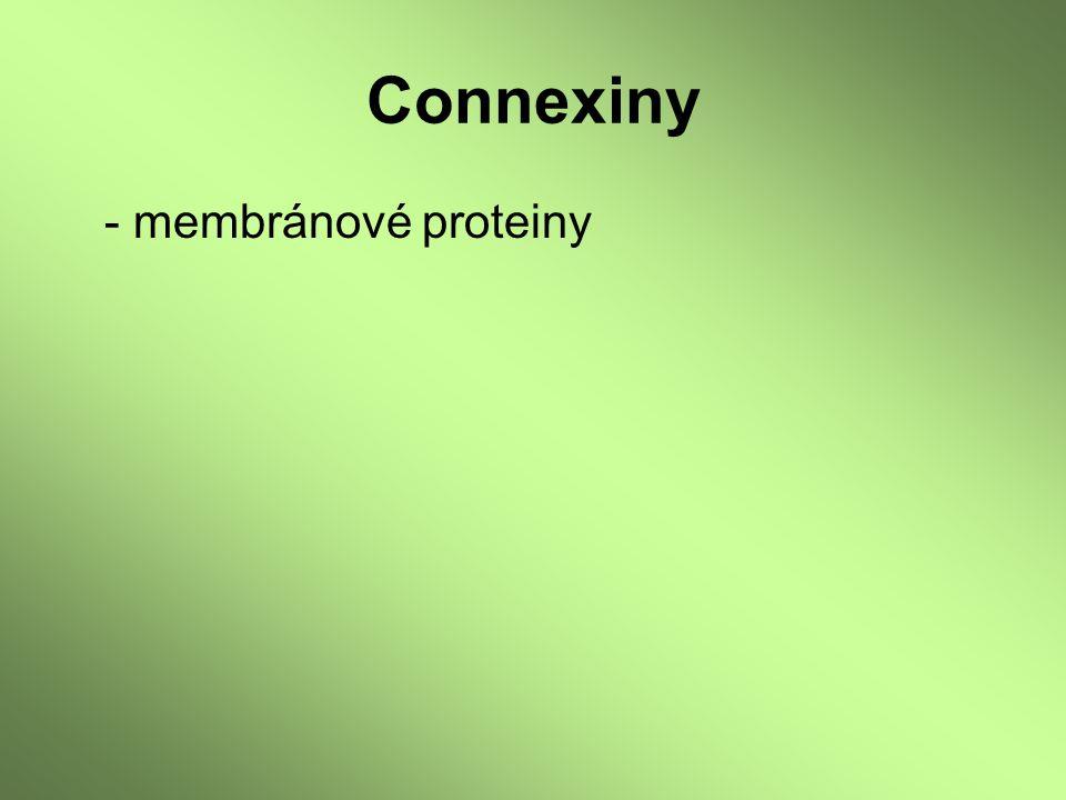 - membránové proteiny
