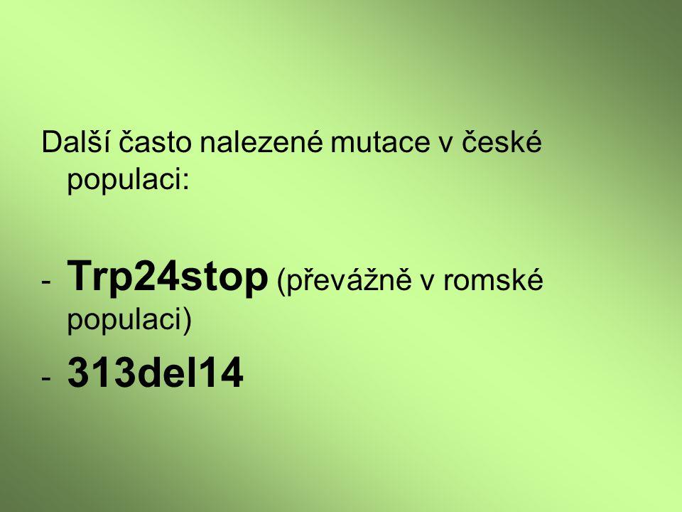 Další často nalezené mutace v české populaci: - Trp24stop (převážně v romské populaci) - 313del14