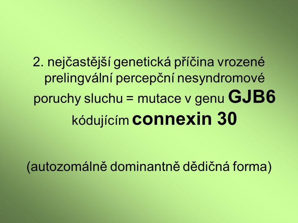 2. nejčastější genetická příčina vrozené prelingvální percepční nesyndromové poruchy sluchu = mutace v genu GJB6 kódujícím connexin 30 (autozomálně do