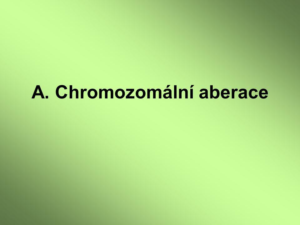A. Chromozomální aberace