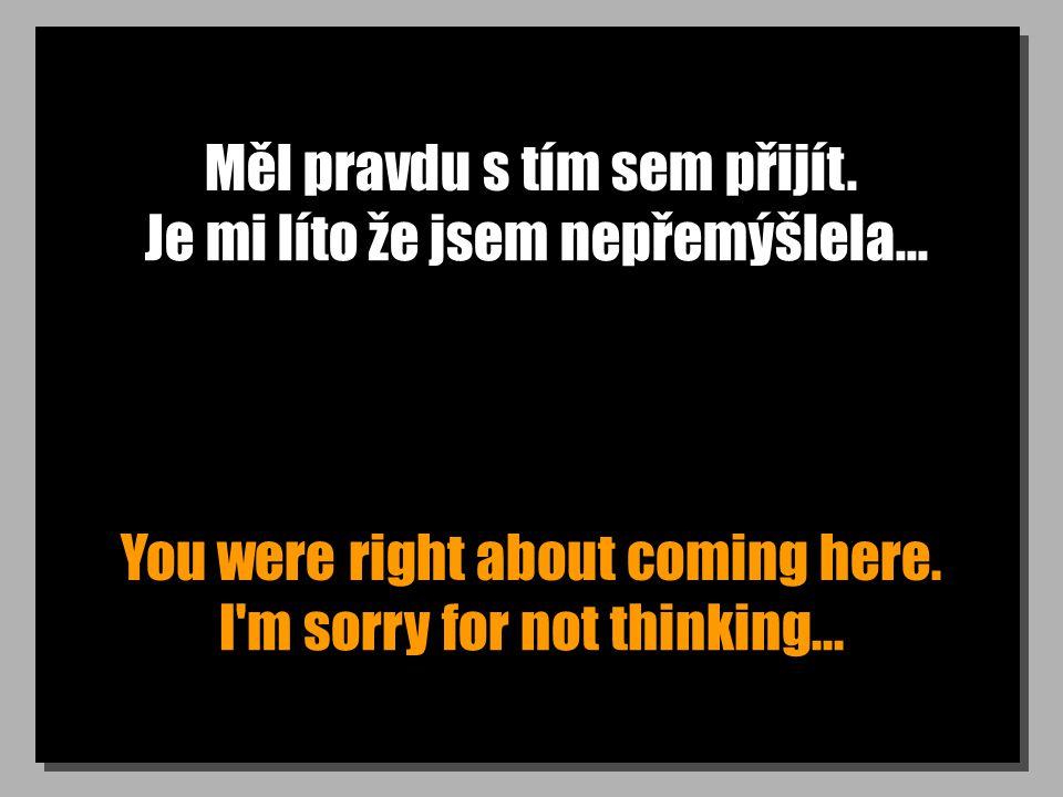Měl pravdu s tím sem přijít. You were right about coming here. Je mi líto že jsem nepřemýšlela... I'm sorry for not thinking...