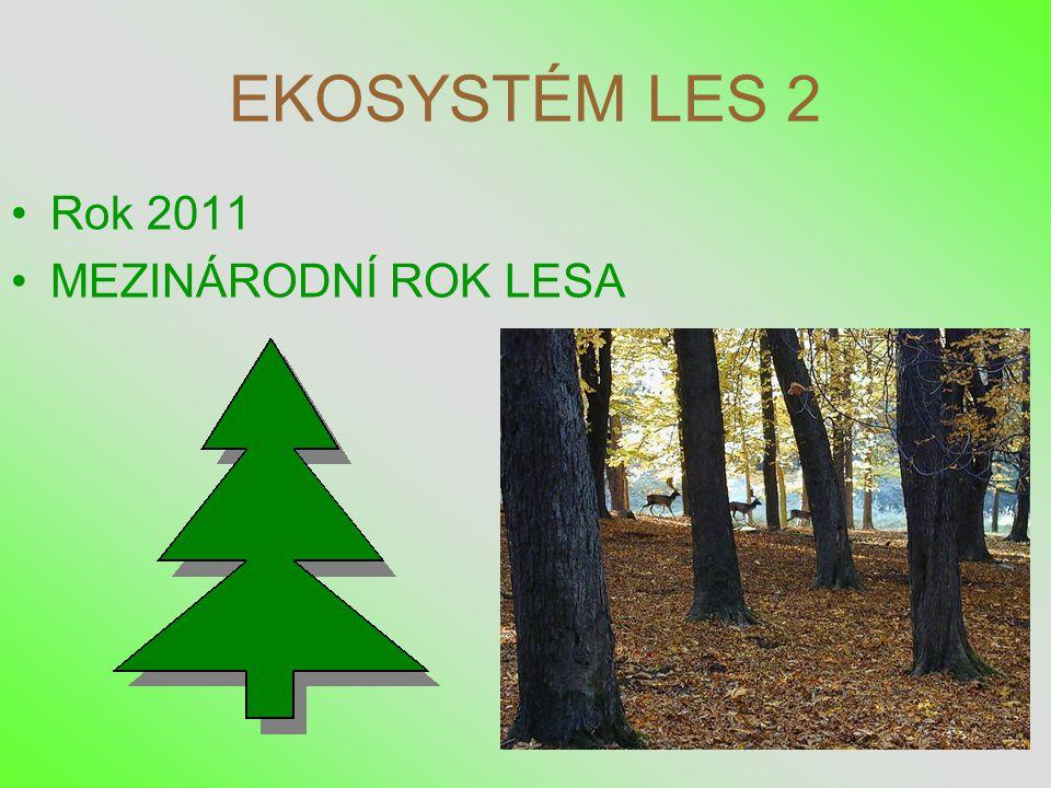 EKOSYSTÉM LES 2 •Rok 2011 •MEZINÁRODNÍ ROK LESA