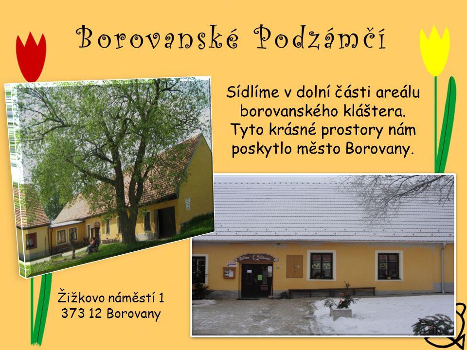 Sídlíme v dolní části areálu borovanského kláštera. Tyto krásné prostory nám poskytlo město Borovany. Žižkovo náměstí 1 373 12 Borovany