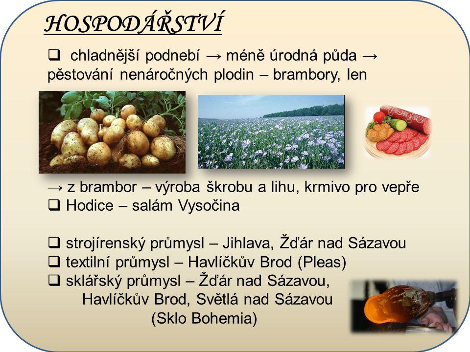 HOSPODÁŘSTVÍ  chladnější podnebí → méně úrodná půda → pěstování nenáročných plodin – brambory, len → z brambor – výroba škrobu a lihu, krmivo pro vep