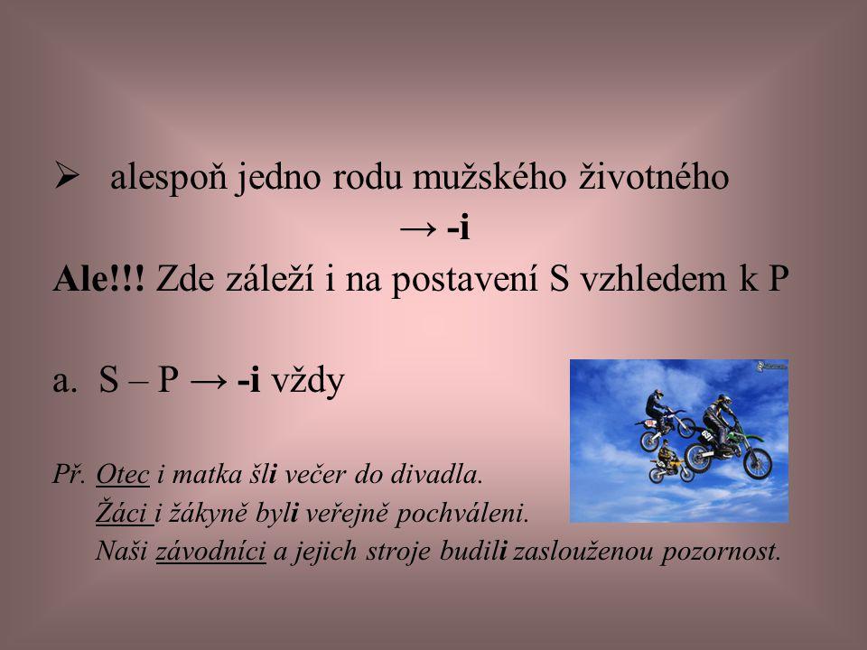 b.S – P → -i/y Př. Předmětem studia se staly/i kosatky a delfíni.