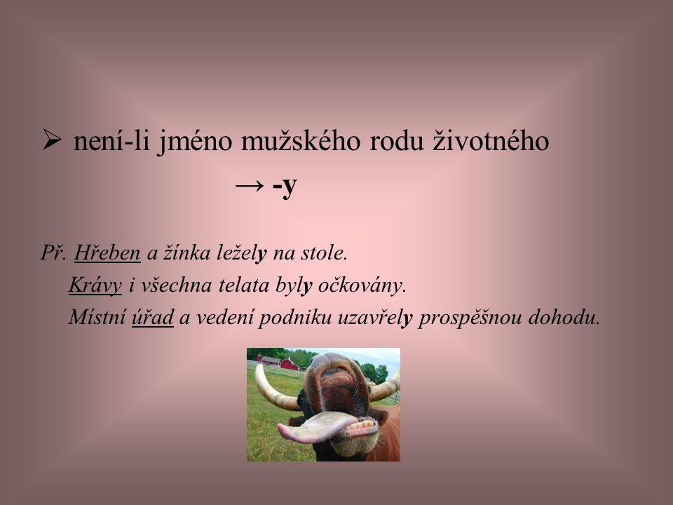 Použitá literatura: •Čechová, M.a kol. Čeština, řeč a jazyk.