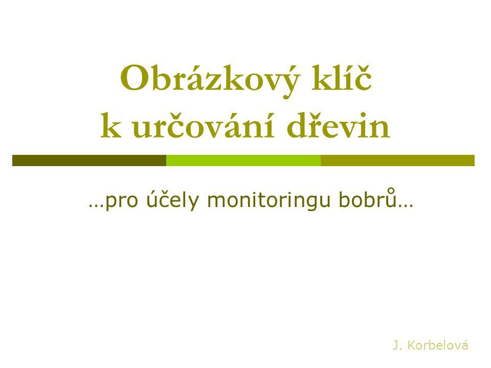 Obrázkový klíč k určování dřevin …pro účely monitoringu bobrů… J. Korbelová