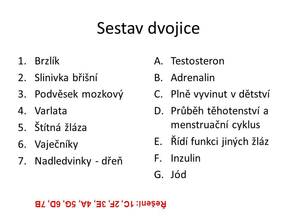 Sestav dvojice 1.Brzlík 2.Slinivka břišní 3.Podvěsek mozkový 4.Varlata 5.Štítná žláza 6.Vaječníky 7.Nadledvinky - dřeň A.Testosteron B.Adrenalin C.Pln