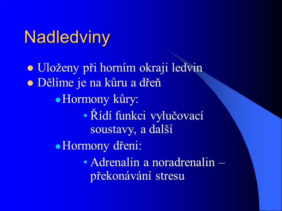 Nadledviny  Uloženy při horním okraji ledvin  Dělíme je na kůru a dřeň  Hormony kůry: •Řídí funkci vylučovací soustavy, a další  Hormony dřeni: •A
