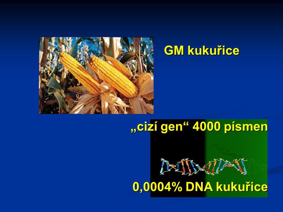 """""""cizí gen 4000 písmen 0,0004% DNA kukuřice GM kukuřice"""