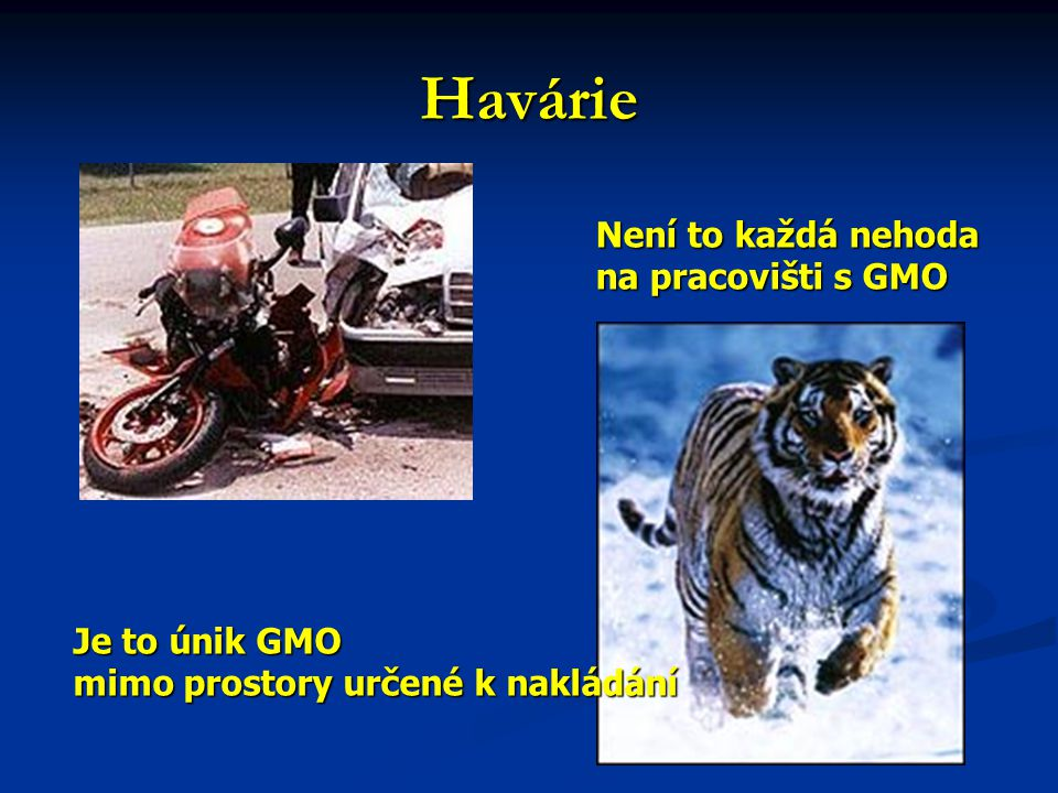 Havárie Není to každá nehoda na pracovišti s GMO Je to únik GMO mimo prostory určené k nakládání