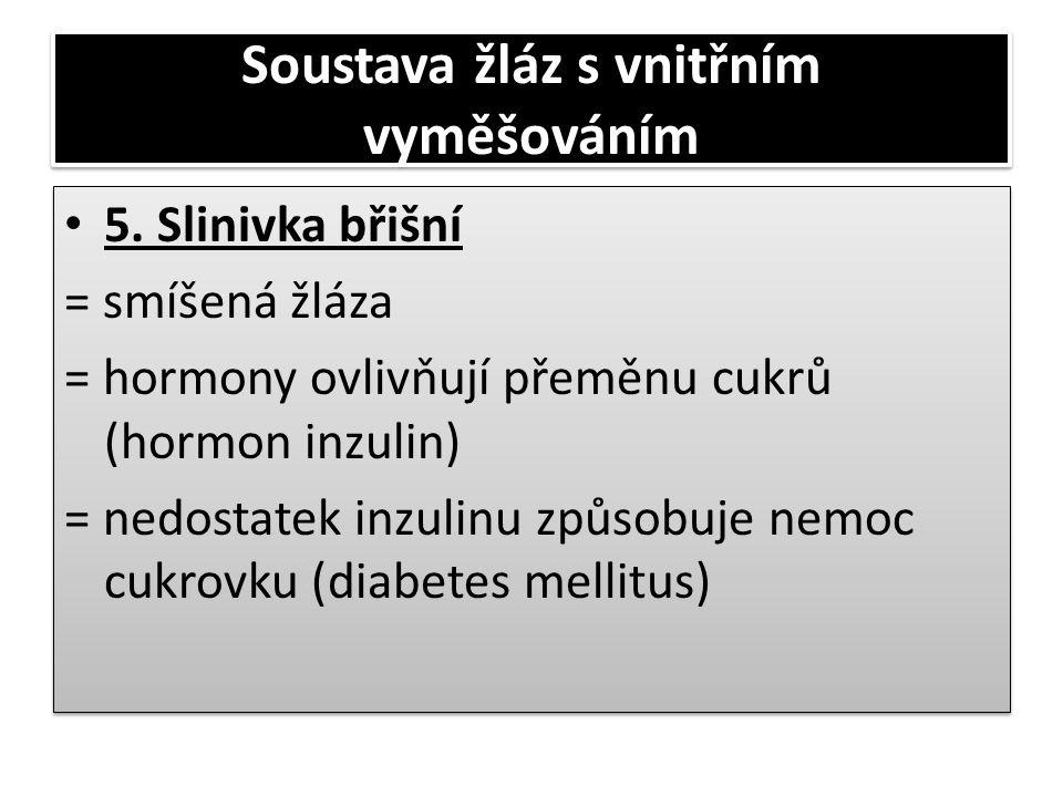 Soustava žláz s vnitřním vyměšováním • 5. Slinivka břišní = smíšená žláza = hormony ovlivňují přeměnu cukrů (hormon inzulin) = nedostatek inzulinu způ