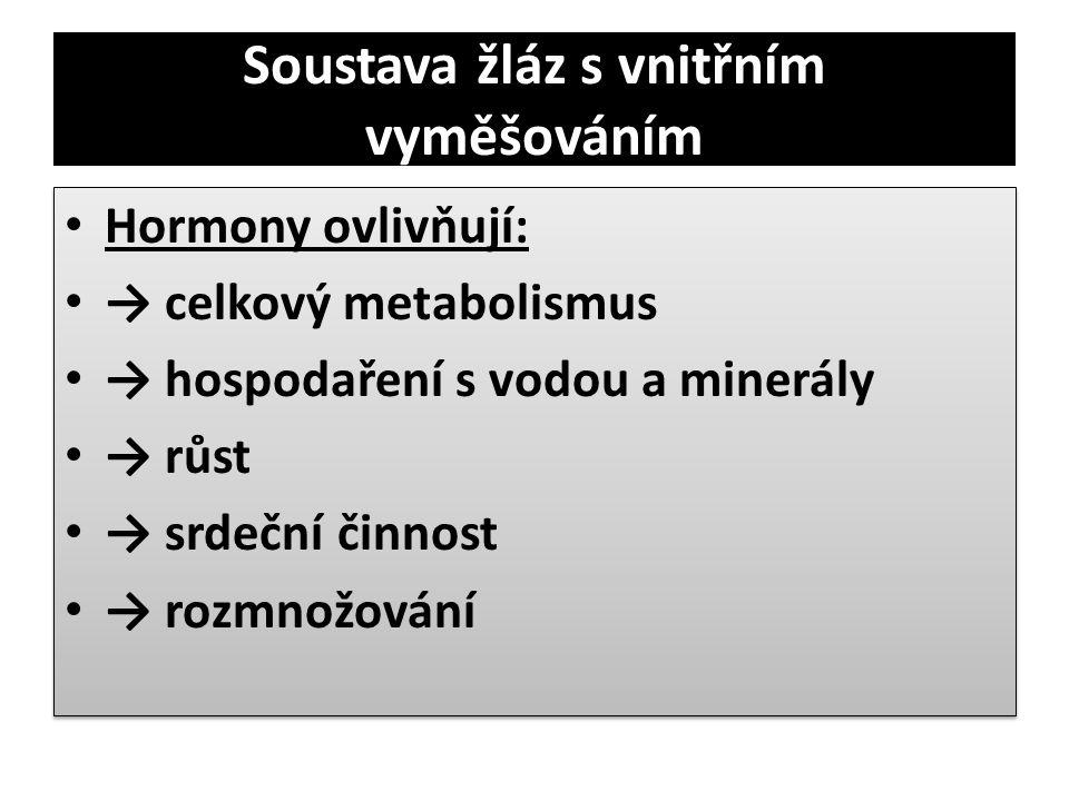 Soustava žláz s vnitřním vyměšováním • Hormony ovlivňují: • → celkový metabolismus • → hospodaření s vodou a minerály • → růst • → srdeční činnost • →