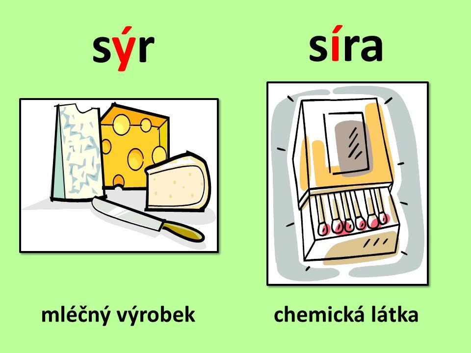 Doplňte y, ý/i, í a věty napište do sešitu.• Do pastičky políčíme s_r.