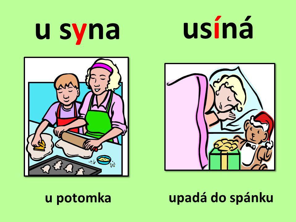 Doplňte y, ý/i, í a věty napište do sešitu.• O víkendu byli na návštěvě u s_na.