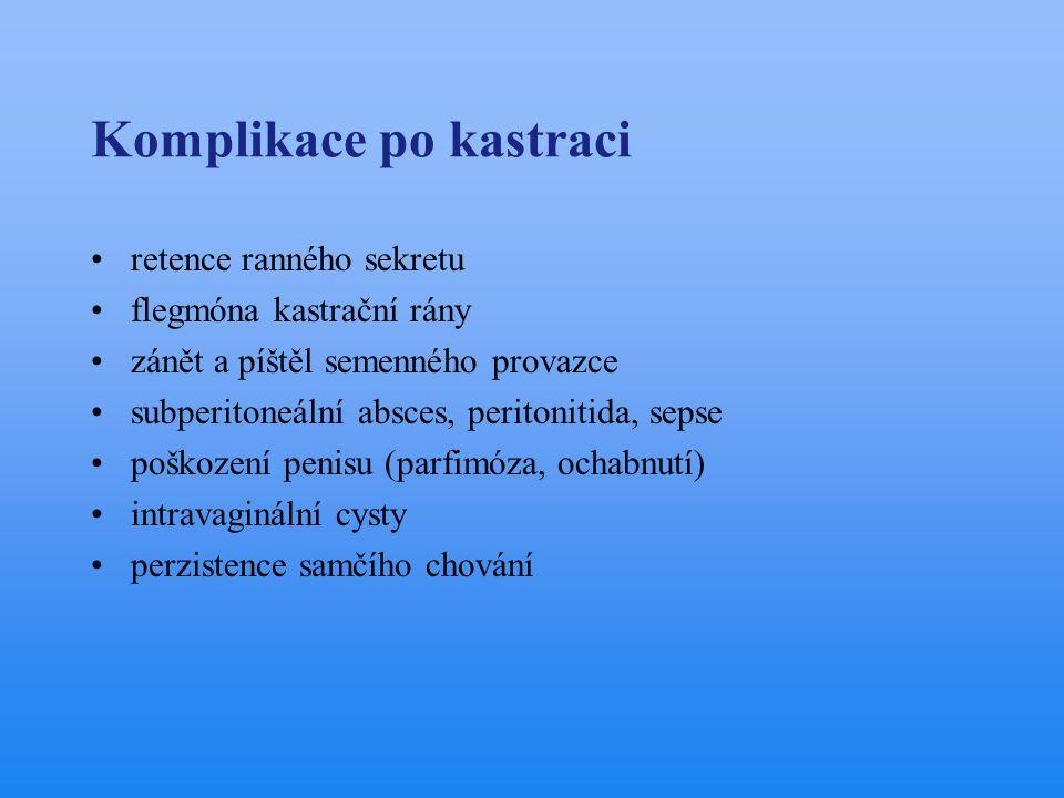 Komplikace po kastraci •retence ranného sekretu •flegmóna kastrační rány •zánět a píštěl semenného provazce •subperitoneální absces, peritonitida, sep