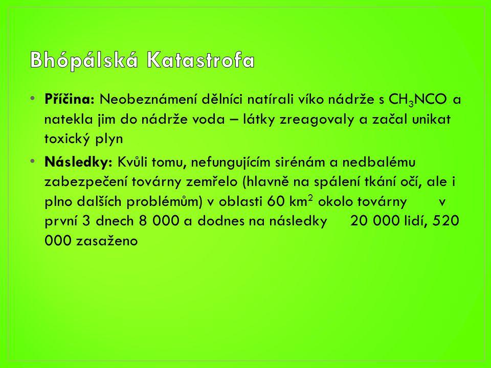 • http://www.tyden.cz/rubriky/zahranici/den-d/obrazem-deset- nejhorsich-ekologickych-katastrof_170432.html • http://cs.wikipedia.org/wiki/Bh%C3%B3p%C3%A1lsk%C3%A1_ka tastrofa • http://www.novinky.cz/zahranicni/svet/202448-nejvetsi-chemicka- katastrofa-sveta-ma-osm-viniku.html • http://en.wikipedia.org/wiki/File:Tomokos_hand.gif • http://en.wikipedia.org/wiki/Chisso • http://withfriendship.com/user/neeha/minamata-disease.php • http://www.ue2008.fr/PFUE/lang/en/accueil/PFUE-10_2008/PFUE- 8.10.2008/reunion_du_comite_pour_l_ application_de_la_directive__seveso_/pid/13869.html • http://cs.wikipedia.org/wiki/Seveso_(hav%C3%A1rie)
