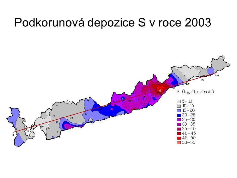 Podkorunová depozice S v roce 2003