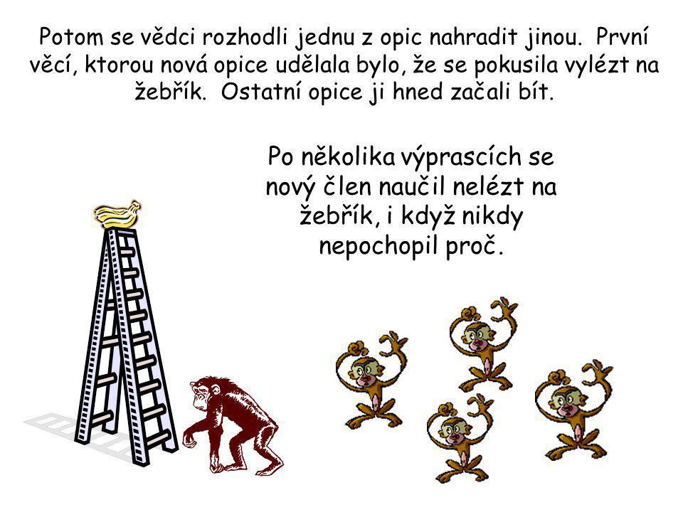Po nějakém čase se i přez velké pokušení žádná opice neopovážila vlézt na žebřík.