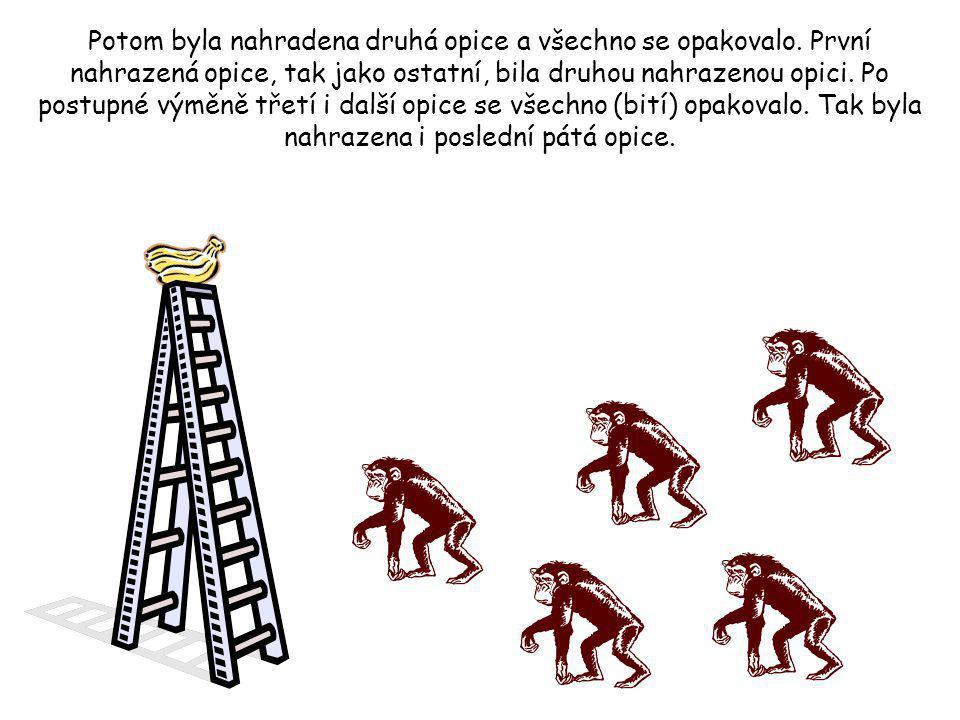 Potom se vědci rozhodli jednu z opic nahradit jinou. První věcí, ktorou nová opice udělala bylo, že se pokusila vylézt na žebřík. Ostatní opice ji hne