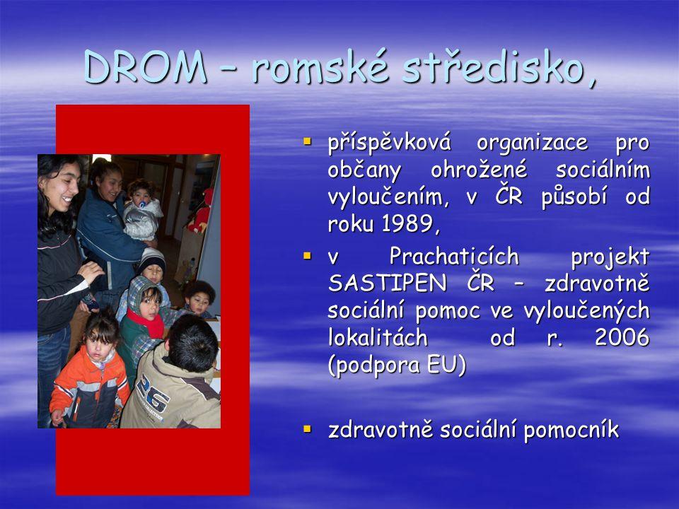 DROM – romské středisko,  příspěvková organizace pro občany ohrožené sociálním vyloučením, v ČR působí od roku 1989,  v Prachaticích projekt SASTIPE
