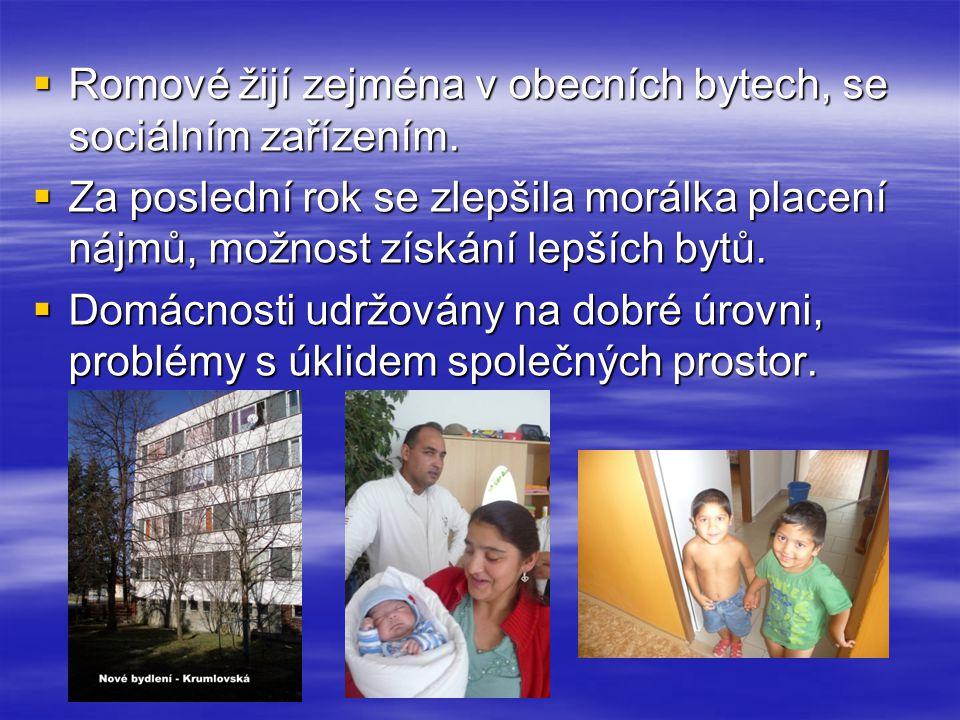  Romové žijí zejména v obecních bytech, se sociálním zařízením.  Za poslední rok se zlepšila morálka placení nájmů, možnost získání lepších bytů. 